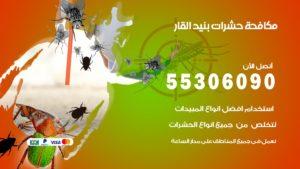 مكافحة حشرات بنيد القار